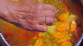 Uma mulher prepara uma sopa do vegetariano com cenouras e pimentas na natureza e adiciona-lhe o sal vídeos de arquivo