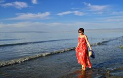 Uma mulher que anda pelo lago Imagem de Stock Royalty Free