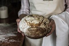 Uma mulher que guarda um pão morno cozido do vulcão fotografia de stock
