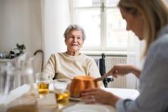 Uma mulher superior na cadeira de rodas com um visitante da saúde que senta-se na tabela em casa fotos de stock royalty free