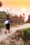 Uma mulher vietnamiana superior que leva um pacote de lenha ao andar em um caminho do país no crepúsculo fotografia de stock