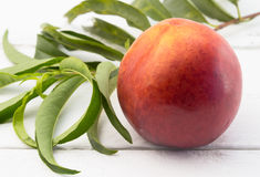 Uma nectarina com em fundo branco Imagem de Stock