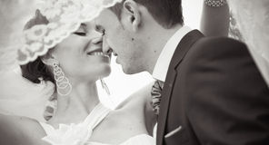 Uma noiva e um noivo bonitos Fotografia de Stock Royalty Free