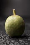 Uma noz verde fresca na casca é fresca da árvore Noz em um fundo preto Macro foto de stock royalty free