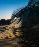 Uma onda de ondulação com as palmeiras no Laguna Beach, Califórnia foto de stock