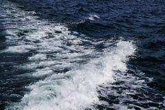 Uma onda no Mar do Norte fotografia de stock royalty free