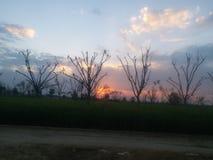Uma opinião bonita do por do sol na área rural imagens de stock