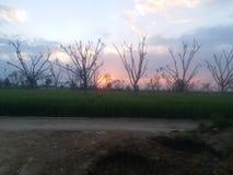 Uma opinião bonita do por do sol na área rural foto de stock royalty free