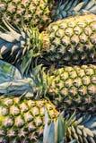 Uma opinião do close-up de abacaxis frescos no mercado Fotografia de Stock Royalty Free