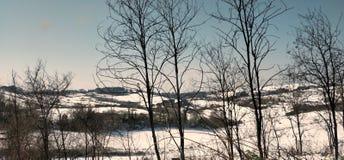 Uma opinião do inverno Imagem de Stock