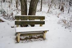 Uma opinião do inverno de um banco nas madeiras imagens de stock royalty free