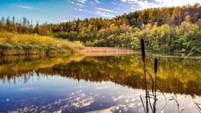 Uma opinião do outono sobre um lago Fotografia de Stock Royalty Free