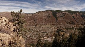 Uma opinião o álamo tremedor Colorado Imagens de Stock Royalty Free