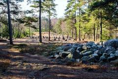 Uma outra ideia dos nove círculos de pedra de Hunn imagens de stock
