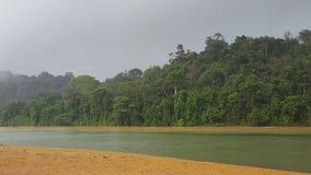 Uma outra vista de um rio no Suriname fotos de stock