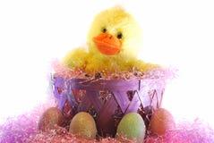 Uma Páscoa Ducky Foto de Stock Royalty Free