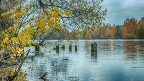 Uma paisagem azul do rio em outubro imagem de stock royalty free