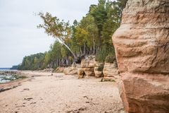 Uma paisagem bonita do beira-mar com um arenito cava Costa alaranjada do arenito no mar Báltico Imagem de Stock