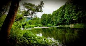 Uma paisagem bonita do rio imagens de stock