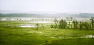 Uma paisagem bonita em Finlandia - sonhador, olhar nevoento do atoleiro fotografia de stock royalty free