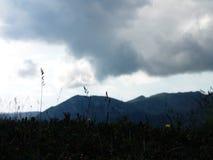 Uma paisagem bonita escura Imagens de Stock