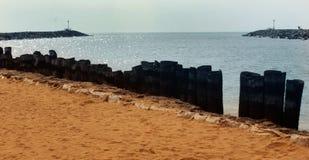 Uma paisagem do arasalaru do rio com a cerca da haste da palmeira perto da praia karaikal fotos de stock royalty free