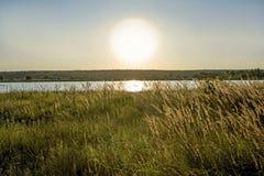 Uma paisagem do deserto com um grande sol não filtrado, um lago na distância e vegetação litoral no primeiro plano fotografia de stock
