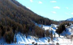 Uma paisagem do inverno imagens de stock