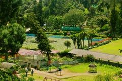 Uma paisagem do parque de bryant do kodaikanal fotografia de stock