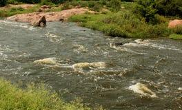 Uma paisagem do rio pequeno com rochas imagem de stock
