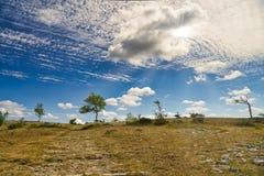 Uma paisagem inglesa seca depois de um longo período sem chuva fotografia de stock