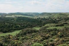 Uma paisagem natural bonita com árvores verdes em um terreno montanhoso contra um céu azul fotos de stock royalty free