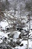 Uma paisagem nevado com um córrego e umas árvores cobertos de neve imagens de stock royalty free