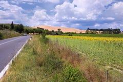 Uma paisagem típica de Toscânia fotografia de stock royalty free