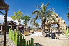 uma palma grande em um parque em france foto de stock royalty free