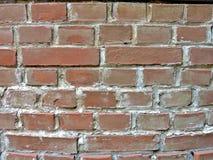 Uma parede de tijolo redbrown Fotografia de Stock Royalty Free