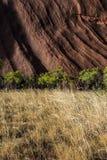Uma parede de Uluru Foto de Stock