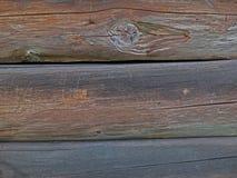 Uma parede do log Fotografia de Stock