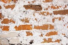 Uma parede dos tijolos cobertos com o cal Imagens de Stock