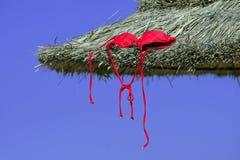 Uma parte superior de biquini vermelha Fotografia de Stock