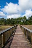 Uma passagem de madeira através de um rio pantanoso com as nuvens macias brancas em um céu azul Imagens de Stock