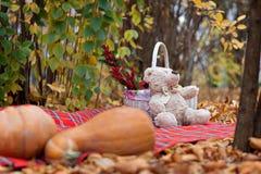 Uma peluche do urso de peluche Imagem de Stock Royalty Free