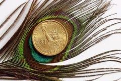 Uma pena do pavão Foto de Stock Royalty Free