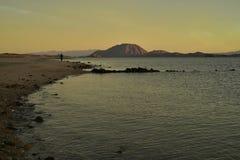 Uma pessoa anda manhã Baja da praia, México Imagem de Stock Royalty Free