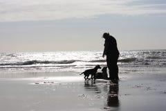 Uma pessoa com dois cães em um Sandy Beach cintilando na luz do sol Fotografia de Stock Royalty Free