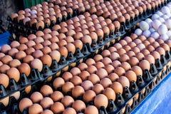 Uma pilha da galinha eggs em bandejas plásticas pretas Fotos de Stock Royalty Free