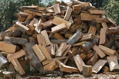 Uma pilha da lenha desbastada seca fora na perspectiva das árvores verdes Imagem de Stock