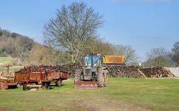Uma pilha da madeira em um campo com trator Imagem de Stock