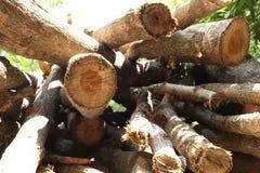 Uma pilha da madeira a remover para queimar-se Fotografia de Stock Royalty Free
