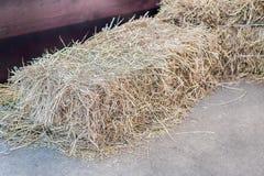 Uma pilha da palha no campo, pacotes da palha após a colheita Foto de Stock